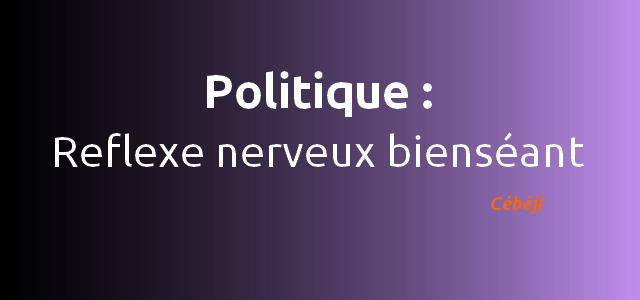 politique definition