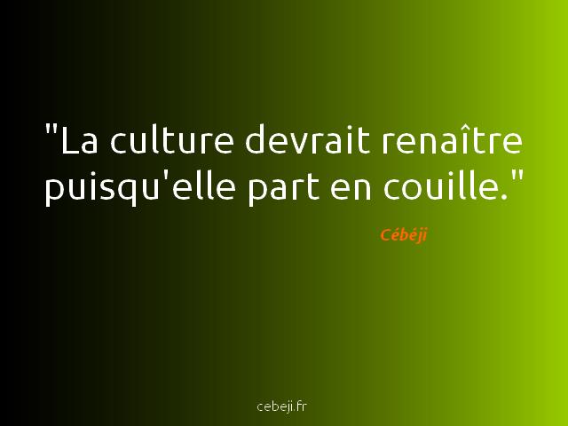 culture renaissance